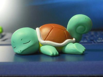 ポケモンおやすみフレンズXY&Z ゼニガメ